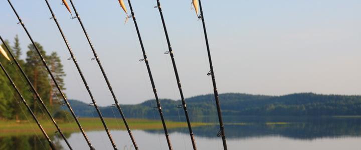производство прикормки для рыбалки